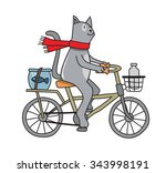 Vector Color Cat On A Bicycle...