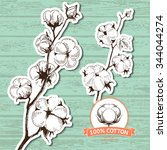 vector hand drawn stems of... | Shutterstock .eps vector #344044274