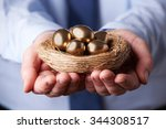 Businessman Holding Nest Full...