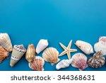 Colorful Seashells On Blue...