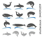 whale set. vector | Shutterstock .eps vector #344391059