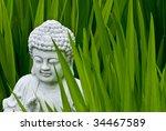 Buddha Shows The Way
