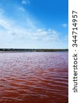 view of red water in a micro... | Shutterstock . vector #344714957