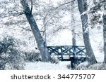 first snow in park. nature... | Shutterstock . vector #344775707