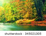 Autumn River Bank With Orange...