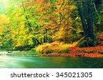 Autumn River Bank With Orange...