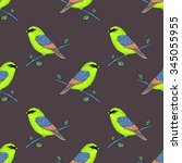 vector cute colorful canary... | Shutterstock .eps vector #345055955