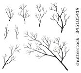 set of hand drawn branches and... | Shutterstock .eps vector #345105419