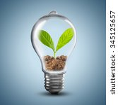 Light Bulb With Soil And Green...