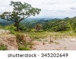 nice overview of the monteverde ... | Shutterstock . vector #345202649
