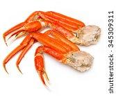 Snow Crab  Chionoecetes Opilio  ...