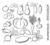 set vegetables  black outline... | Shutterstock . vector #345310619