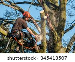 tree surgeon hanging from ropes ... | Shutterstock . vector #345413507
