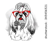 dog york in a glasses with tie. ... | Shutterstock .eps vector #345456521