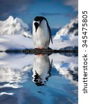 penguin standing on the rocks | Shutterstock . vector #345475805