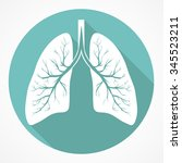human lung anatomy flat icon... | Shutterstock .eps vector #345523211