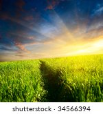 way in grass and sunset | Shutterstock . vector #34566394