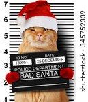 cat holding a banner offender... | Shutterstock . vector #345752339