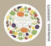 vegetables set on white circle... | Shutterstock .eps vector #345905975