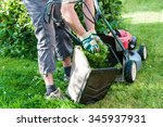 mowing the lawn in my garden | Shutterstock . vector #345937931