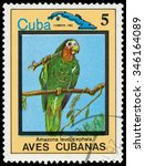 Small photo of CUBA - CIRCA 1983: a stamp printed in Cuba shows Amazona leucocephala and map of Cuba