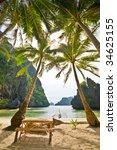 Under Coconut Palms On Wild...