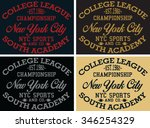 new york  city sports vector... | Shutterstock .eps vector #346254329