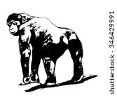 graphic image of a monkey   Shutterstock .eps vector #346429991