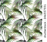 watercolor tropical palm... | Shutterstock . vector #346557551