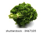 bunch of parsley | Shutterstock . vector #3467105