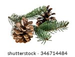 the branch of fir tree and cone ... | Shutterstock . vector #346714484