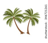 Palm Vector Illustration. Palm...
