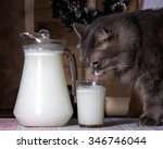 cat drinking milk from a cup.... | Shutterstock . vector #346746044