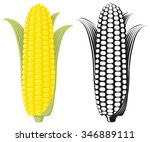 corn on the cob   sweetcorn... | Shutterstock .eps vector #346889111