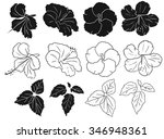 hibiscus silhouettes vector set | Shutterstock .eps vector #346948361