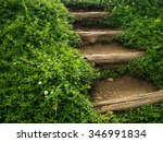 Nature Stairs With Wooden Steps