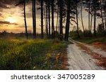 outer wood | Shutterstock . vector #347005289