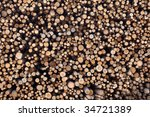 the sections of cut down ... | Shutterstock . vector #34721389