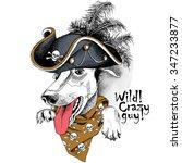 Portrait Of A Dog Greyhound...