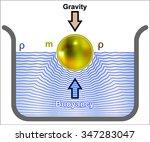 Buoyancy  Buoyant Force