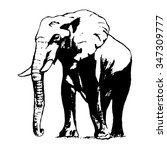 graphic image of an elephant on ... | Shutterstock .eps vector #347309777