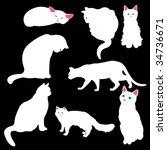white cat silhouettes  vector...   Shutterstock .eps vector #34736671