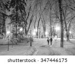 Snowy Night Alley In The Park...