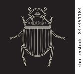 scarab beetle  line art vector... | Shutterstock .eps vector #347491184