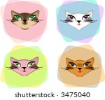 four sexy cat faces  different... | Shutterstock .eps vector #3475040