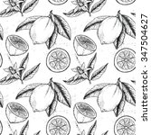 hand drawn vector seamless... | Shutterstock .eps vector #347504627