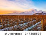 mount ararat in armenia.... | Shutterstock . vector #347505539