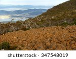 mount wellington in hobart a...