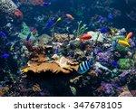 underwater background. ... | Shutterstock . vector #347678105