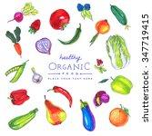 colorful  marker pen drawn... | Shutterstock . vector #347719415